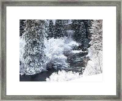 Winter Along The Creek Framed Print