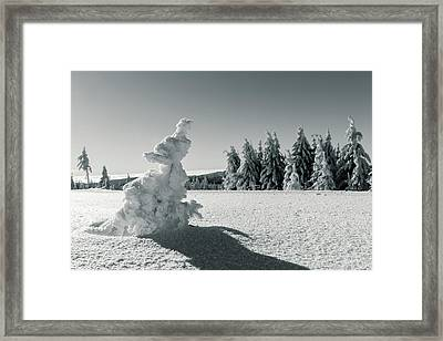 Winter Framed Print by Andreas Levi