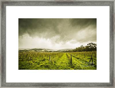 Winter Apple Orchard Framed Print by Jorgo Photography - Wall Art Gallery