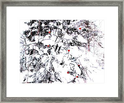 Winter Apple Framed Print by Yury Bashkin