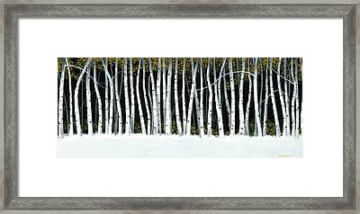 Framed Print featuring the painting Winter Aspens II by Michael Swanson