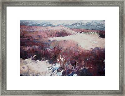 Winter At Fish Slough Iv Framed Print by Anita Stoll