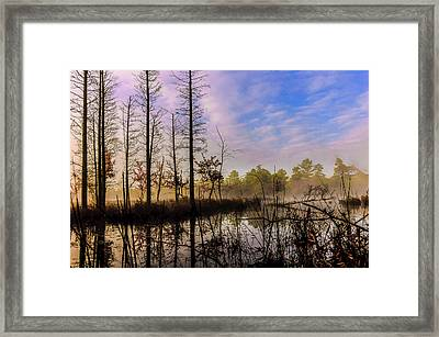 Winter At Quaker Bridge Framed Print by Louis Dallara
