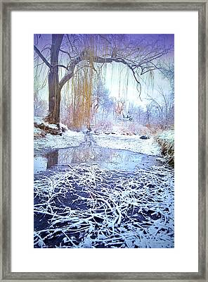 Winter At Skaha Lake Park Framed Print by Tara Turner