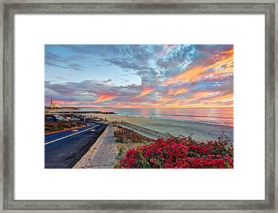 Winter At Tamarack Framed Print by Ann Patterson
