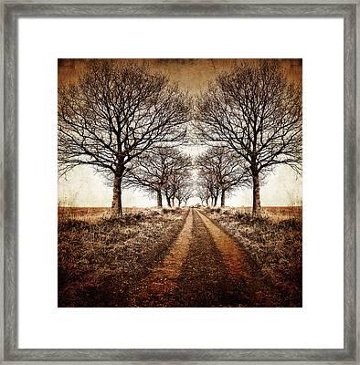 Winter Avenue Framed Print by Meirion Matthias