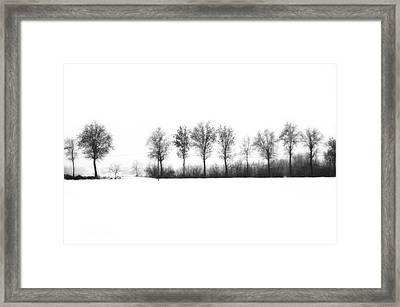 Winter Bareness Framed Print by Silvia Ganora