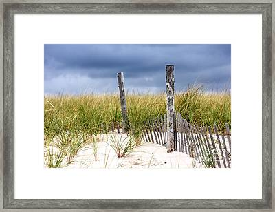 Framed Print featuring the photograph Who Knows How Long This Will Last by Dana DiPasquale