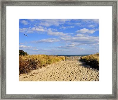 Framed Print featuring the photograph Winter Beach Sky by JoAnn Lense