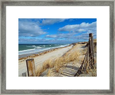 Winter Beach View Framed Print by Dianne Cowen