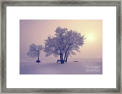 Winter Beauty  Framed Print by Ian McGregor