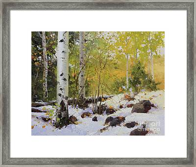 Winter Beauty Sangre De Mountain 2 Framed Print by Gary Kim