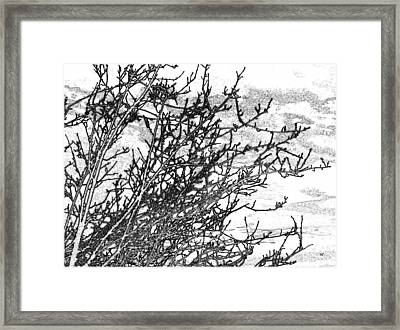 Winter Beckons Framed Print by Will Borden