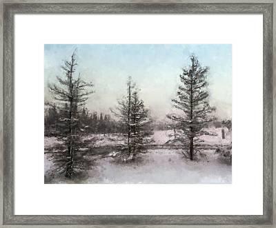 Winter Begins Framed Print