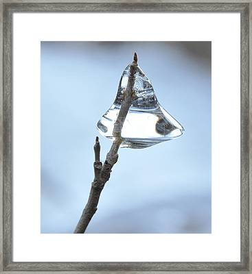 Framed Print featuring the photograph Christmas Bells by Glenn Gordon