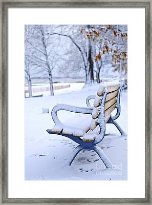Winter Bench Framed Print by Elena Elisseeva