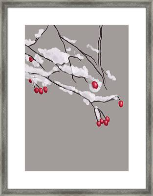 Winter Berries And Branches Covered In Snow Framed Print