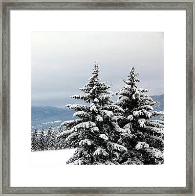 Framed Print featuring the photograph Winter Bliss by Will Borden