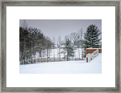 Blizzard Beauty Framed Print