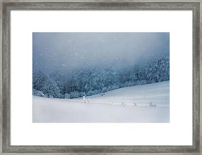 Winter Blizzard Framed Print by Evgeni Dinev