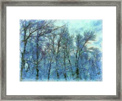 Winter Blue Forest Framed Print