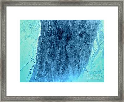 Winter Blue Framed Print by Rick Maxwell