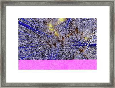 Framed Print featuring the photograph Winter Blues by Tony Beck