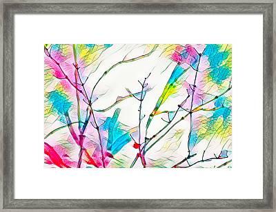 Winter Branch Colors Framed Print
