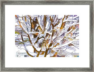 Winter Branches 2 Framed Print by Lanjee Chee