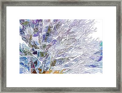 Winter Branches Framed Print by Lanjee Chee