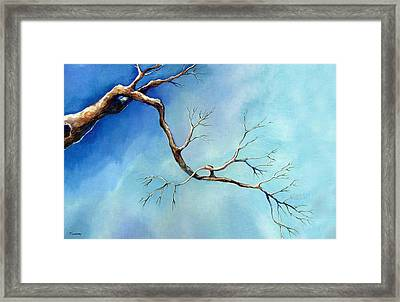 Winter Branching Framed Print by Catherine Twomey