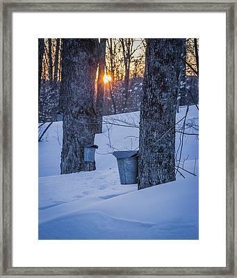 Winter Buckets Framed Print