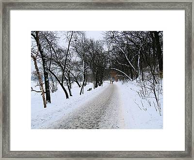 Winter By The Lake IIi Framed Print by David Ritsema