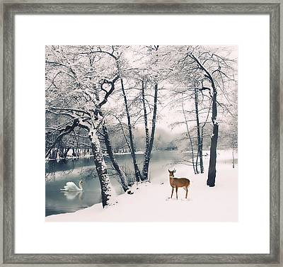 Winter Calls Framed Print by Jessica Jenney