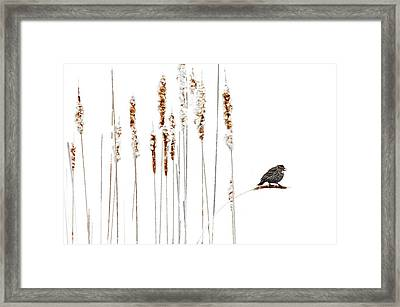 Winter Came Suddenly Framed Print