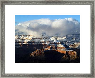Winter Framed Print by Carrie Putz