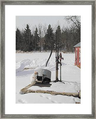 Winter Cat At The Pump Framed Print by Laurie With