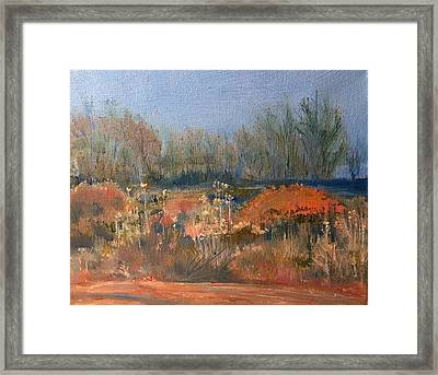 Winter Chamisa Framed Print