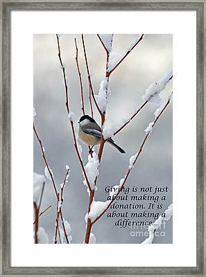 Winter Chickadee Giving Framed Print by Diane E Berry