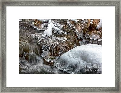 Winter Chill Framed Print by David Millenheft