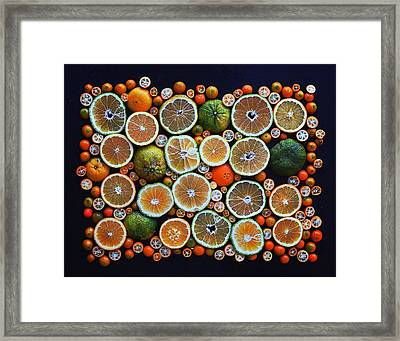 Winter Citrus Mosaic Framed Print