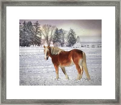 Winter Coat Framed Print by Lori Deiter
