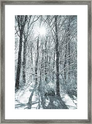 Winter Cold Framed Print by JAMART Photography