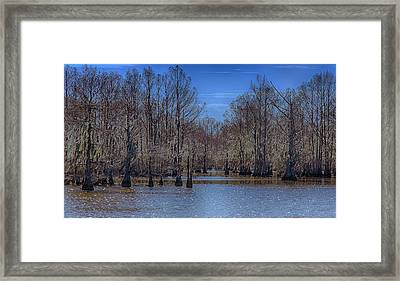 Winter Colors Framed Print by Jim Cook