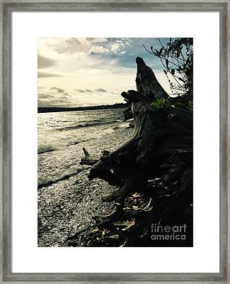 Winter Comes To The Sea Framed Print