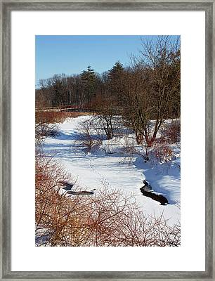 Winter Creek Lined With Red Osea Dogwood Framed Print