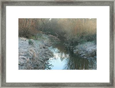 Winter Creek Framed Print by Terry Perham