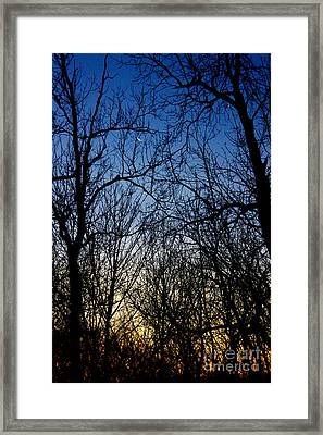 Winter Crescent Moon Framed Print