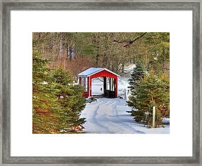 Winter Crossing Framed Print by Evelina Kremsdorf