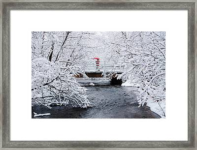 Winter Crossing Framed Print by Ron Day